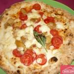 solo-pizza