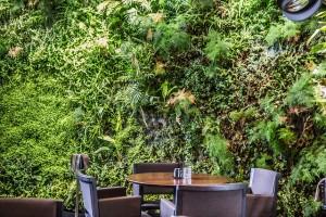 Sushi B - giardino verticale